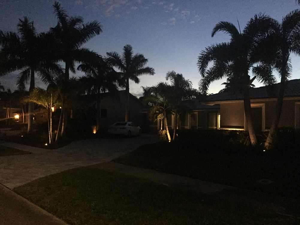 Landscape Lighting Brandon Tampa Apollo Beach Valrico